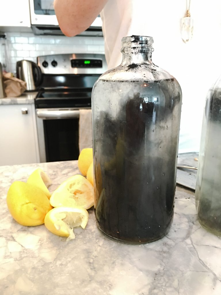 Charcoal Lemonade recipe by Kelly and Erinn